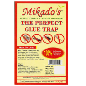 The Perfect Glue Trap (Regular)